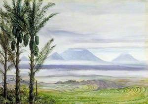 Volcanoes from Temangong with Sugar Palms in the Foreground, Java