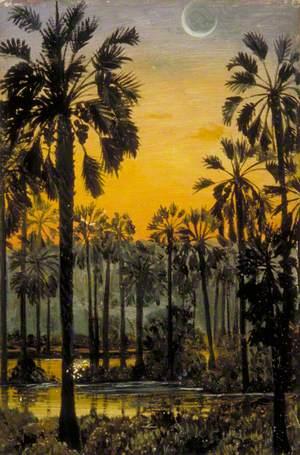 Palmyra Palms in Flood-Time