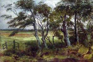 Study on Halsall Moss, Lancashire