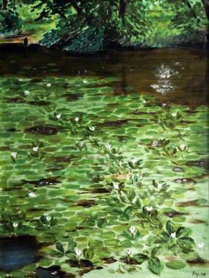 Waterlilies, Rowfant Pond