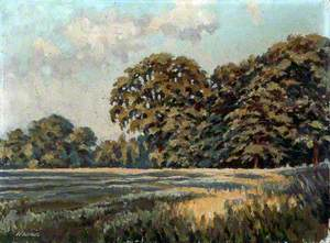 Meadow and Trees near Dibbinsdale, Wirral