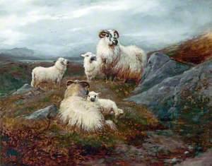 Five Sheep in a Landscape