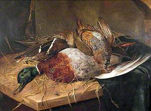 Group of Dead Game Birds