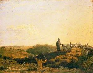 Penning the Flock