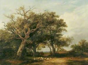 Marlborough Forest