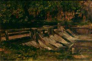 Woodland and Water (The Weir)