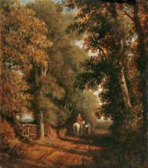 Lane near Budleigh Salterton, Devon