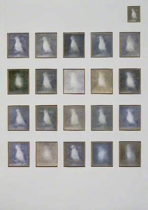 21 Studies of Seagulls