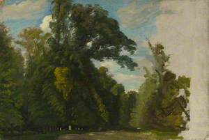 Trees in the Park at Saint-Cloud