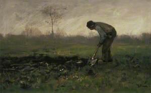 Field Labour
