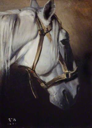 Tête du cheval blanc (Head of a White Horse)