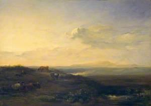 Solway Moss: Evening