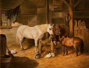 Horses and Ducks in a Stable