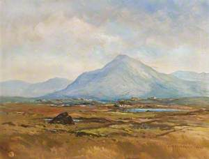 Errigal over Bog Country