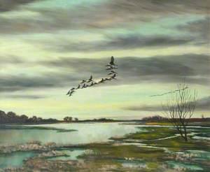 Wild Geese, Lough Neagh