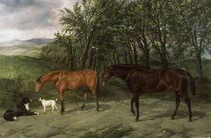 Portrait of Hunters, 'Honey' and 'Heckford'