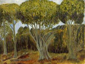 New Forest Trees