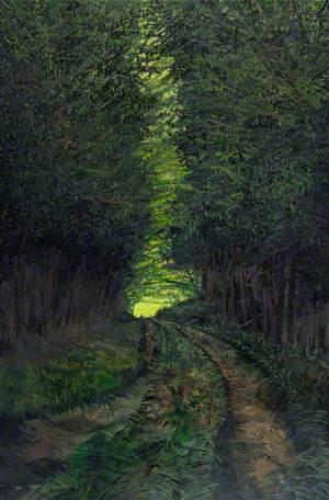 Beyond Tŷ Rhoserchan: Light