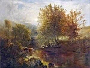 A North Devon Glen, Autumn