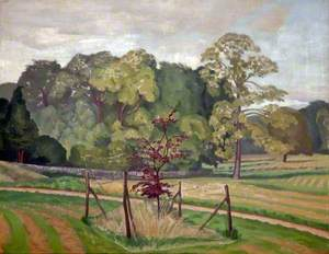 Park Scene, Great Glemham, Suffolk