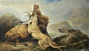 Death of the Stag