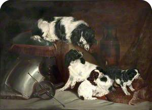 Two King Charles Spaniels and Their Pups