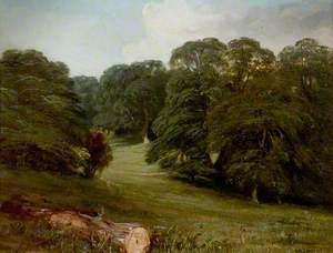 In Welbeck Park, Nottinghamshire