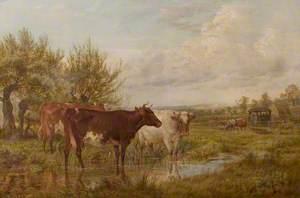 Landscape near Worksop Manor Park, Nottinghamshire
