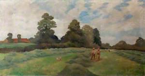 Haymaking at Shibbings Meadows