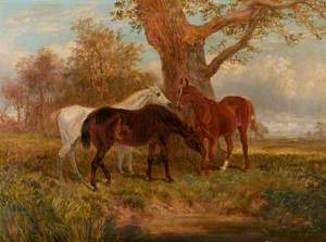 Study of Three Horses in a Landscape