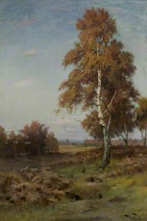 Tree and Rabbits