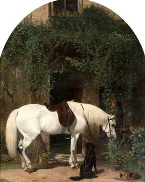 White Horse and Retriever