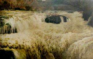 Salmon Leap, Cenarth Falls, Cardiganshire
