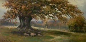 Autumn, Albury Park, Surrey