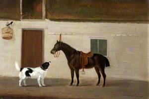 'Bruen', a Spaniel, and 'Squirrel', a Black Horse