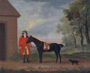 'Atlas', Master Pole's Pony, Which He Rode at 4 Years Old