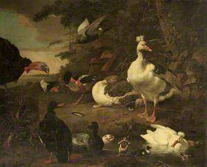 Turkey, Geese, a Shelduck, and Other Fowl, in a Landscape with a Stream