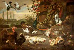 A Cockfight, with Hens, a Peacock, a Muscovy Duck, a Turkey and Pigeons in a Garden Setting