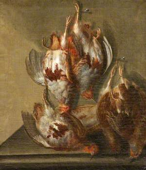 Five Dead Partridges Hanging