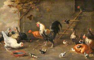 Poultry outside a Hen-House