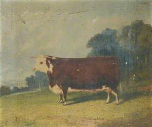 A Prize Cow in a Wooded River Landscape