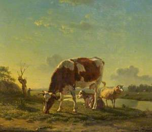 Cattle and Sheep by a River