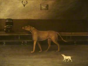 A Mastiff and a Small Dog