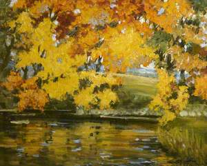 Yellow Leaves Hanging over Water