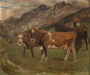 Cattle in the Italian Alps