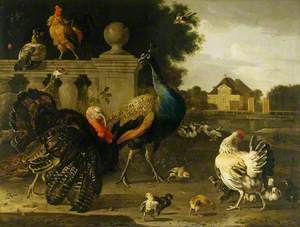 A Turkey Cock and Other Birds in a Garden