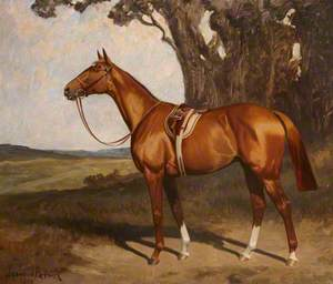 'Benevente', a Saddled Chestnut Racehorse in a Landscape