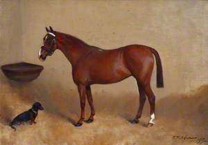 'Beatrice', a Chestnut Horse with a Dachshund in a Stable