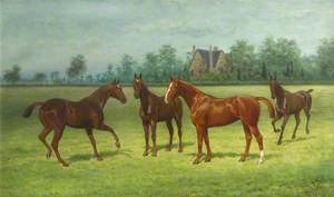'Lockey', 'Lady Abbess', 'Beatrice' and 'Mahomet': Four Horses in a Field