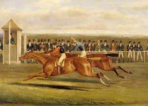 'Elis', Beating Colonel Peel's 'Slane': 300 Guineas, Newmarket
